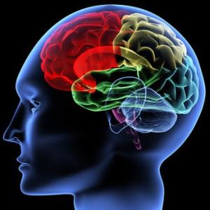 stimulations cerveaux