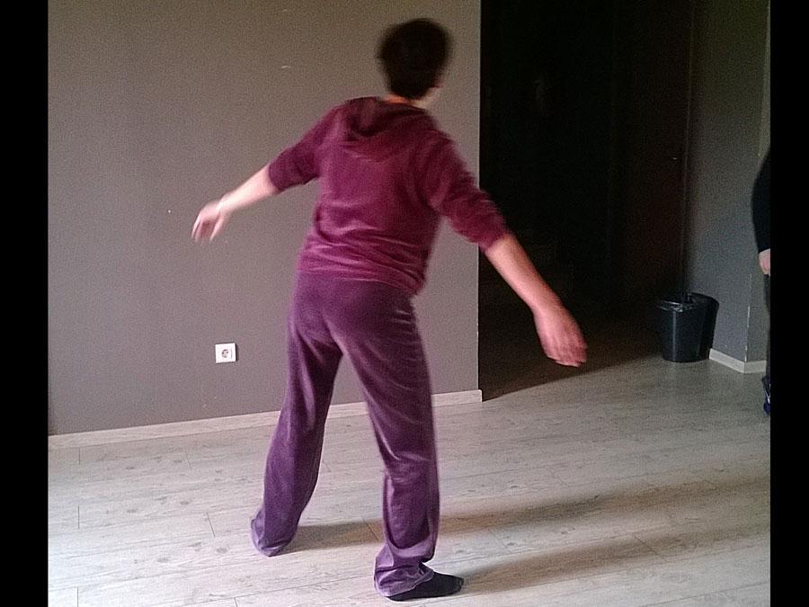 stage dance th rapie 007 karine rocheskarine roches. Black Bedroom Furniture Sets. Home Design Ideas